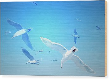 Gulls In Flight Wood Print by Michele Cornelius