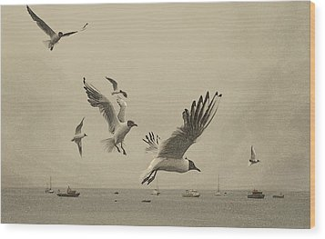 Wood Print featuring the photograph Gulls by Linsey Williams