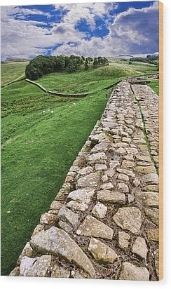 Hadrian's Wall Wood Print by Wendy White