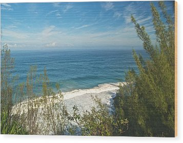 Haena State Park Overview Wood Print by Michael Peychich