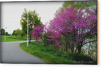 Wood Print featuring the photograph Hamilton Harbor Front Pretty In Pink by Danielle  Parent