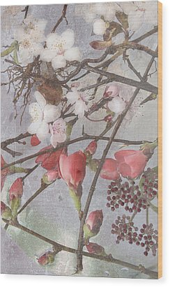 Hanami Wood Print by Antonia and Fabio Duealberi