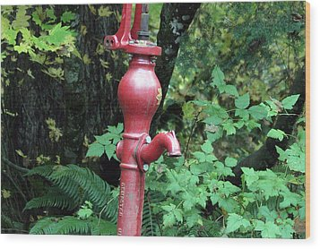 Hand Water Pump Wood Print by S and S Photo
