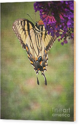 Hanging On Wood Print by Darren Fisher
