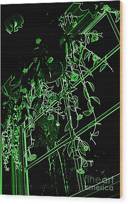 Wood Print featuring the photograph Hanging Plants In Window by Renee Trenholm