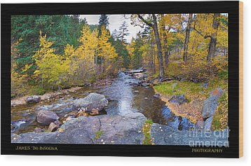 Happy Place In The Woods Panorama Poster  Wood Print by James BO  Insogna