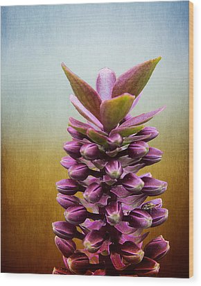 Happy Purple Pods Wood Print by Michael Taggart