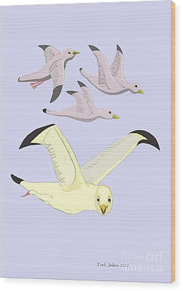 Happy Seagulls Wood Print by Fred Jinkins