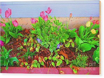 Wood Print featuring the photograph Happy Spring by Ann Johndro-Collins