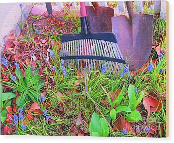 Wood Print featuring the photograph Happy Spring II by Ann Johndro-Collins
