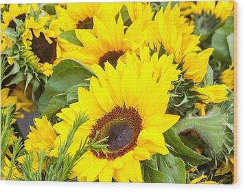 Happy Sunflowers Wood Print by Dina Calvarese