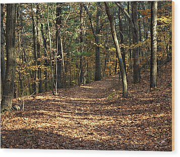 Happy Trails Wood Print by Bruce Carpenter