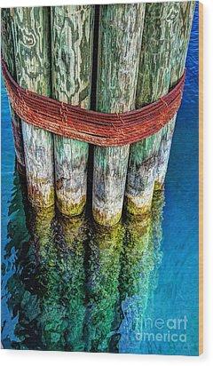 Harbor Dock Posts Wood Print by Michael Garyet