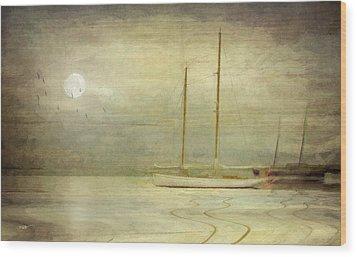Harbor Moonlight Wood Print by Michael Petrizzo