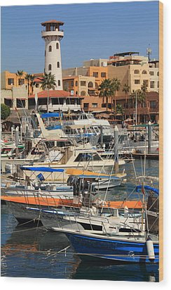 Harbor Waterfront In Cabo San Lucas Wood Print by Roupen  Baker
