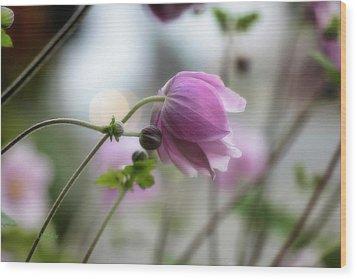 Hardy Grape Leaf Anemone Wood Print by   DonaRose