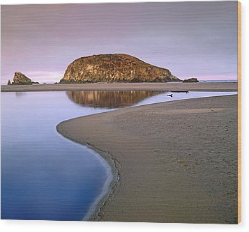 Harris Beach State Park Oregon Wood Print by Tim Fitzharris