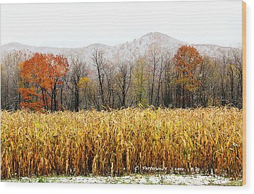 Harvest Snow Wood Print by Carolyn Postelwait