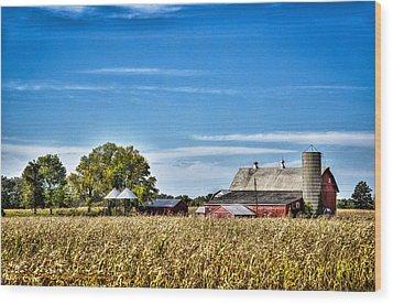 Harvest Time Wood Print by Dan Crosby