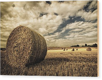 Harvest Time Wood Print by Rick Parrott