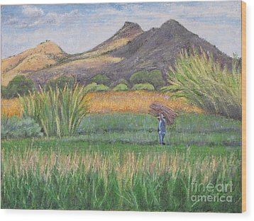 Harvesting In Yagul Wood Print by Judith Zur