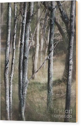 Wood Print featuring the photograph Haunt Of The Fringe Dwellers by Vicki Ferrari