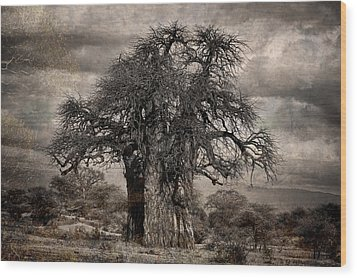Haunted African Baobabs Tree Wood Print by Jess Easter