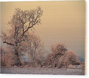 Wood Print featuring the photograph Frost 2 by Linsey Williams