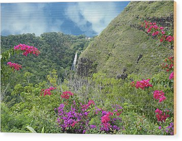 Wood Print featuring the photograph Hawaii Waterfall by Geraldine Alexander