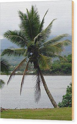 Wood Print featuring the photograph Hawaiian Palm by Athena Mckinzie
