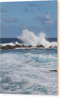 Hawaiian Shore Break  Wood Print by Kerri Ligatich