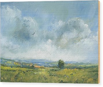 Hawk Over The Yar Valley Wood Print by Alan Daysh