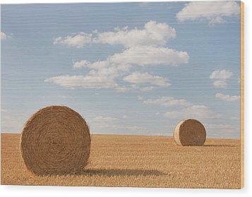 Hay Barrels In Burgundy Region Wood Print by Niall Sargent