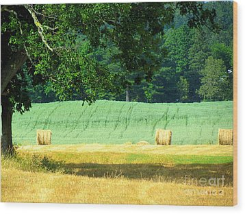 Hay Landscape Wood Print by France Laliberte