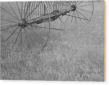 Hay Rake  Wood Print by Wilma  Birdwell