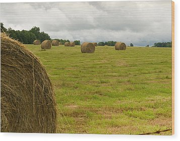 Haybales In Field On Stormy Day Wood Print by Douglas Barnett