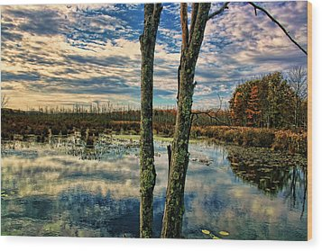 Hd Lakeview Wood Print by Terry Cork