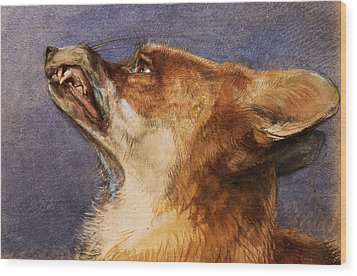 Head Of A Fox Wood Print by John Frederick Lewis