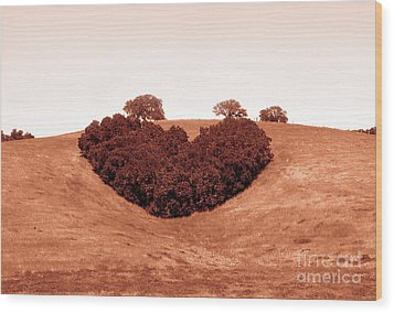 Wood Print featuring the photograph Heart  by Michael Rock