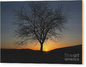 Wood Print featuring the photograph Heart Of The Land by Everett Houser