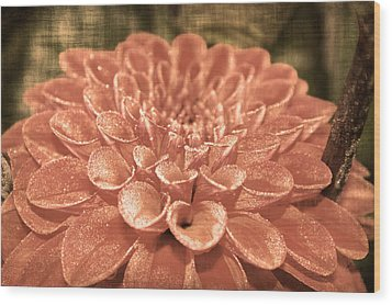 Hearts Abound Wood Print by Terrie Taylor