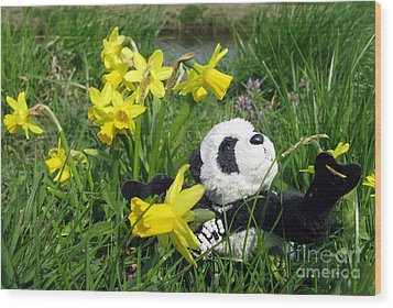 Hello Spring. Ginny From Travelling Pandas Series. Wood Print by Ausra Huntington nee Paulauskaite