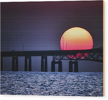 Hello Sun Wood Print by Vicki Jauron