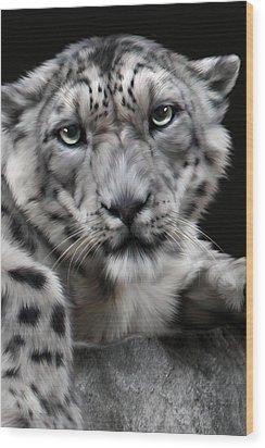 Hercules Wood Print by Big Cat Rescue