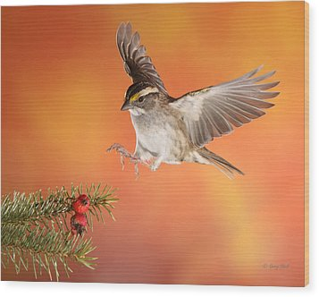 Wood Print featuring the photograph Here I Come by Gerry Sibell