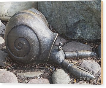 Wood Print featuring the photograph Hermit Crab by Chalet Roome-Rigdon