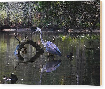 Heron And Root Wood Print by Christy Usilton