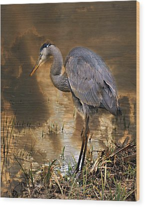 Heron Bronze Wood Print by Marty Koch