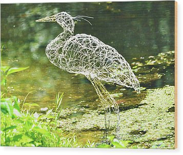 Heron Day Shot At The Pond   Wood Print by Tommy  Urbans