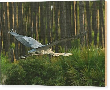 Wood Print featuring the photograph Heron In Flight by Rick Frost